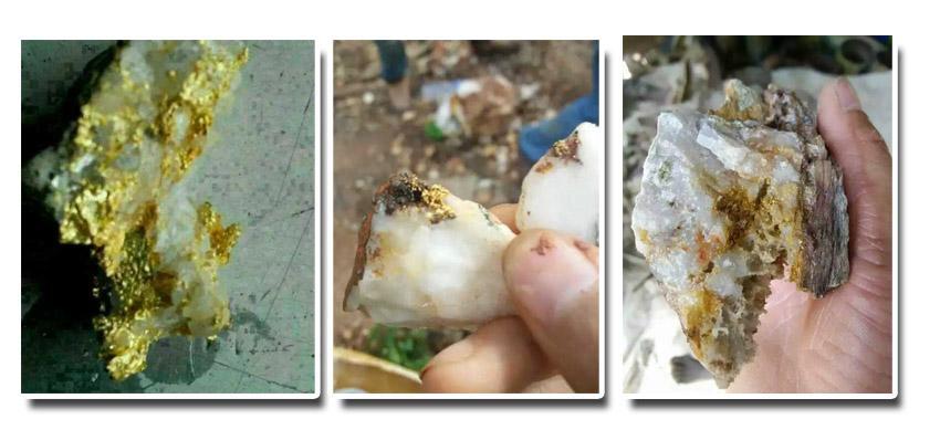 砂金矿原矿样品