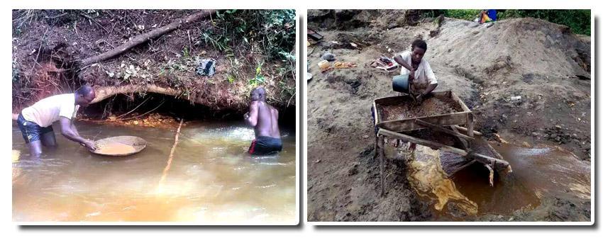 几内亚等落后国家对砂金矿的重选依然采用原始的人工选别
