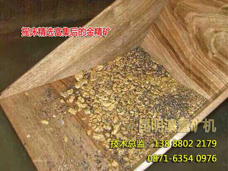 砂金矿经过摇床重选之后得到的毛金